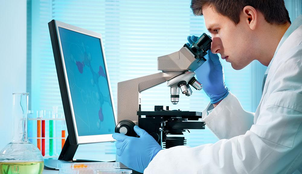 Image result for Pharmacology Career